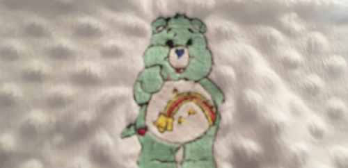 Soft plush mint green care bear cushion